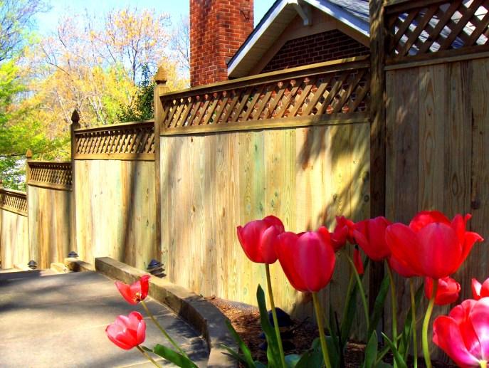 Privacy with Lattice Arlington Arlington County VA by Lions Fence 2