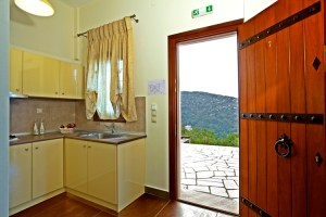SUITE 7-BRONZE-KITCHEN-PILIO HOTEL