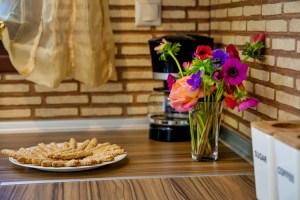 Brandy - Junior Suite 8-kitchen-xenodoxeio pelion