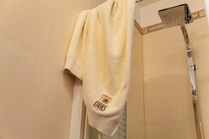 Bronze-Suite 7-Shower-pelion xenodoxeio