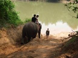 Guest post – Ţara cu ochii de elefant