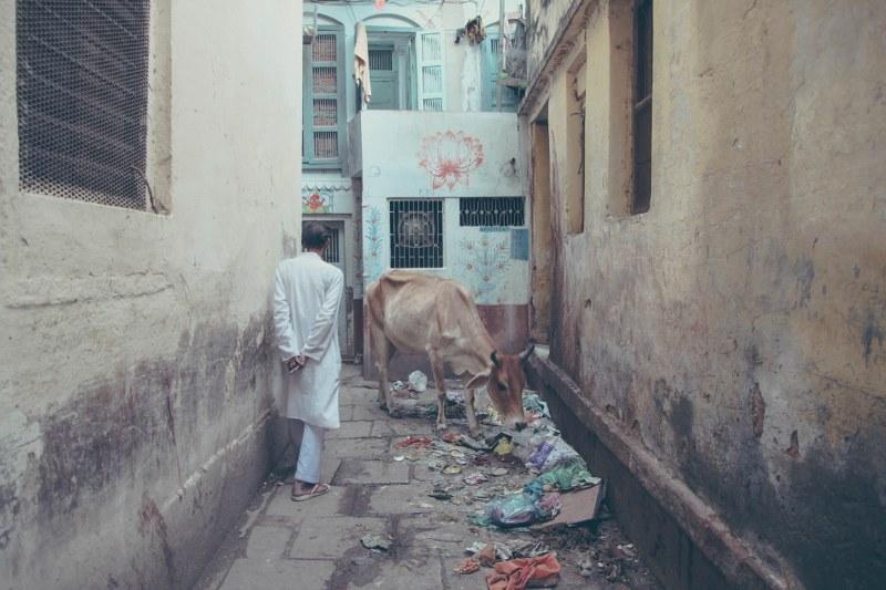 India-Varanasi-rasarit-60_800x533