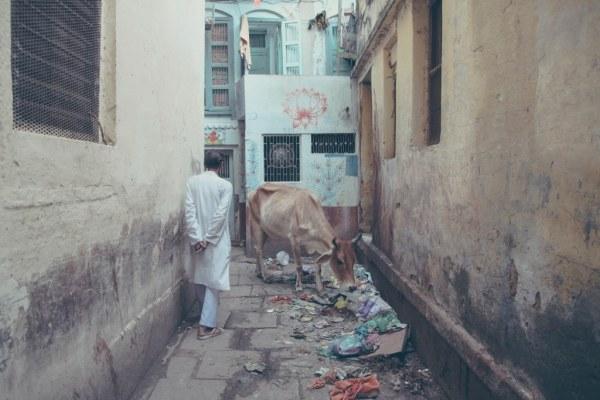 India-Varanasi-rasarit-60_1024x683-600x400