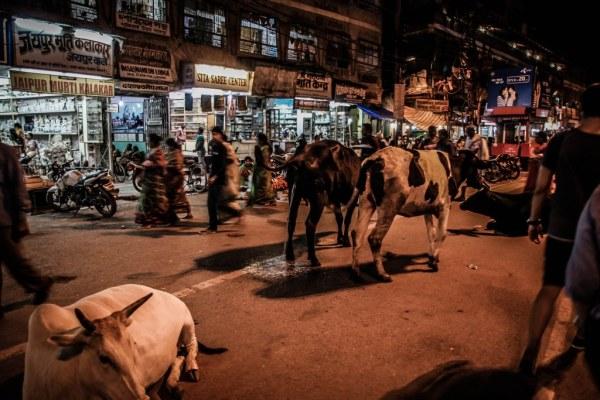 India-Varanasi-rasarit-92_1024x683-600x400