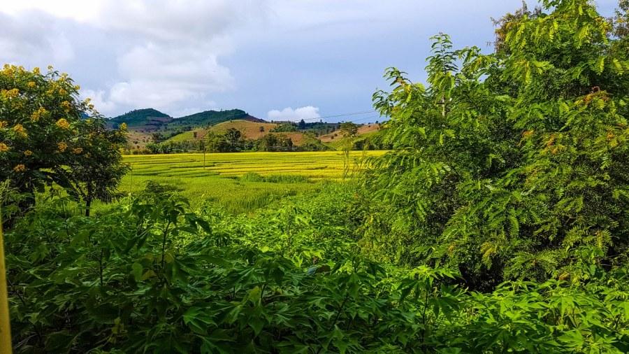 pin-oo-lwin-si-htsipaw-Myanmar-58_1280x720