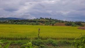 Pyin Oo Lwin și drumul spre Hsipaw – călătorii în Myanmar