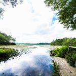 Robert Cushman Murphy County Park
