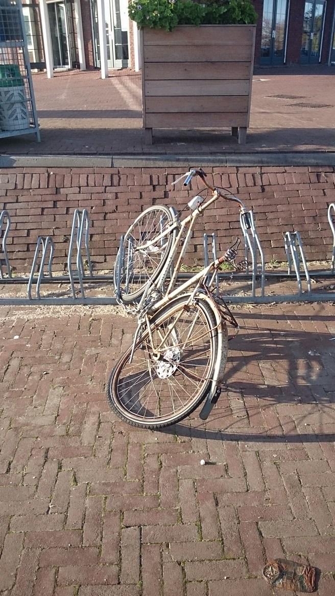 Ez a bringa meg úgy járt