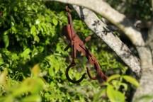 Fáról lógó római kori fémbasz.