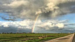 Frieslandon, mivel nagy a placc, ha szivárványt látsz, látod az egészet... még ha lefotózni nem is tudod.