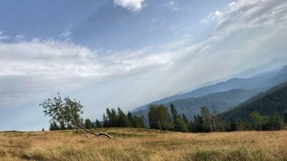 A Ribniska Koca teteje. Mint látható, teljesen sík, és mit nyavalygunk a szint miatt.