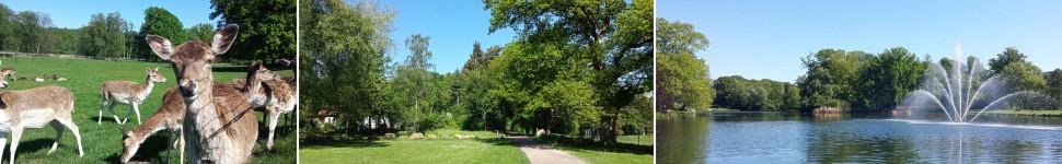 banner-landschaftsgarten-salzuflen