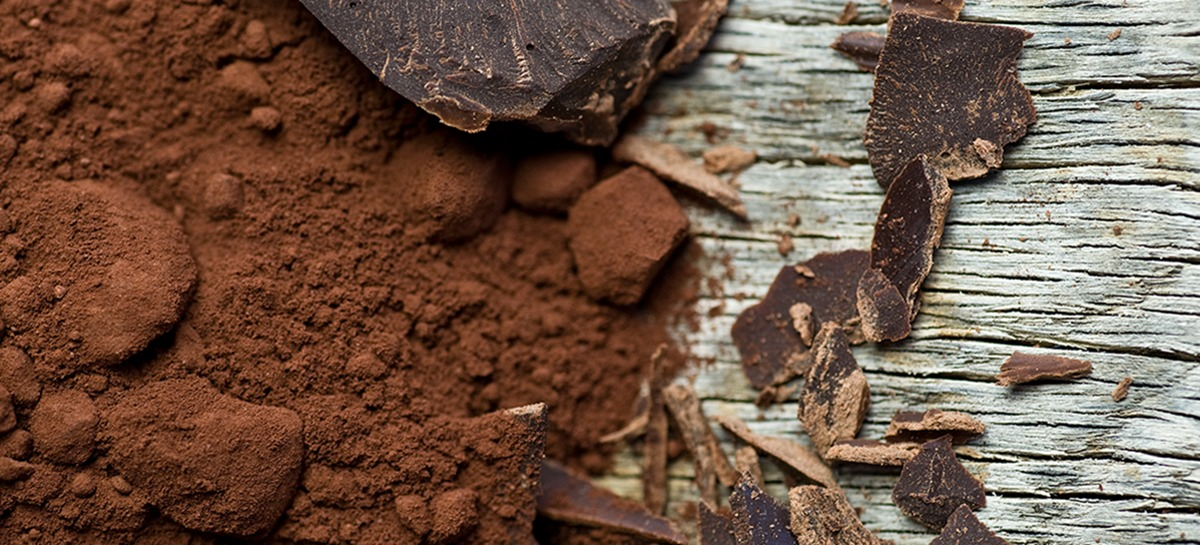 cacao per gelato al cioccolato di lippolis