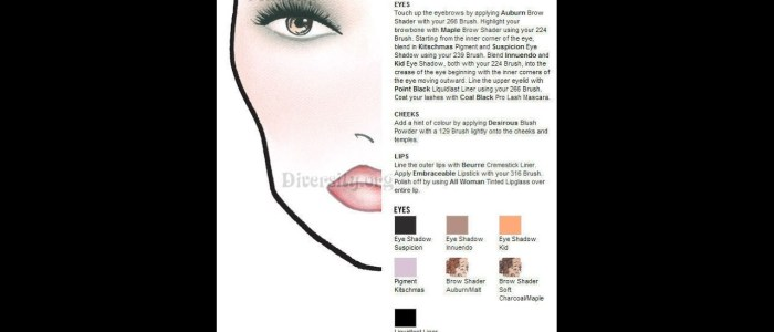 MAC Face Chart Imitation - All Woman