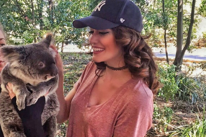 Koala Sanctuary in Brisbane, Australia.