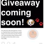 Instagram Giveaway Lipstickmermaidddd
