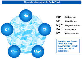 main electrolytes