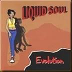 Evolution by Liquid Soul