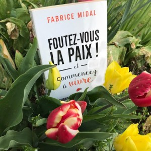 Foutez-vous la paix ! de Fabrice Midal