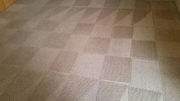 carpet upholstery cleaner medford