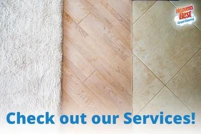 professional carpet cleaning chelsea al