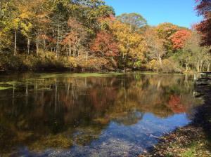 Hiking Long Island Fall Autumn