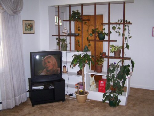 insidehouse2
