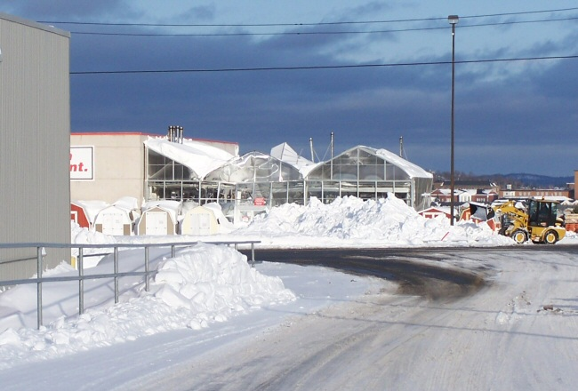 Central's greenhouse collapsed