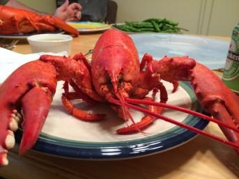 Delicious fresh lobster!