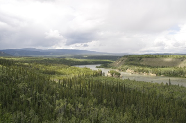 The Five Fingers rapids on the Yukon River. Islands separate the rapids here into 5 routes. Only the eastern one, or the one on the right when you're heading down river, was recommended, and was the one the steamships used.