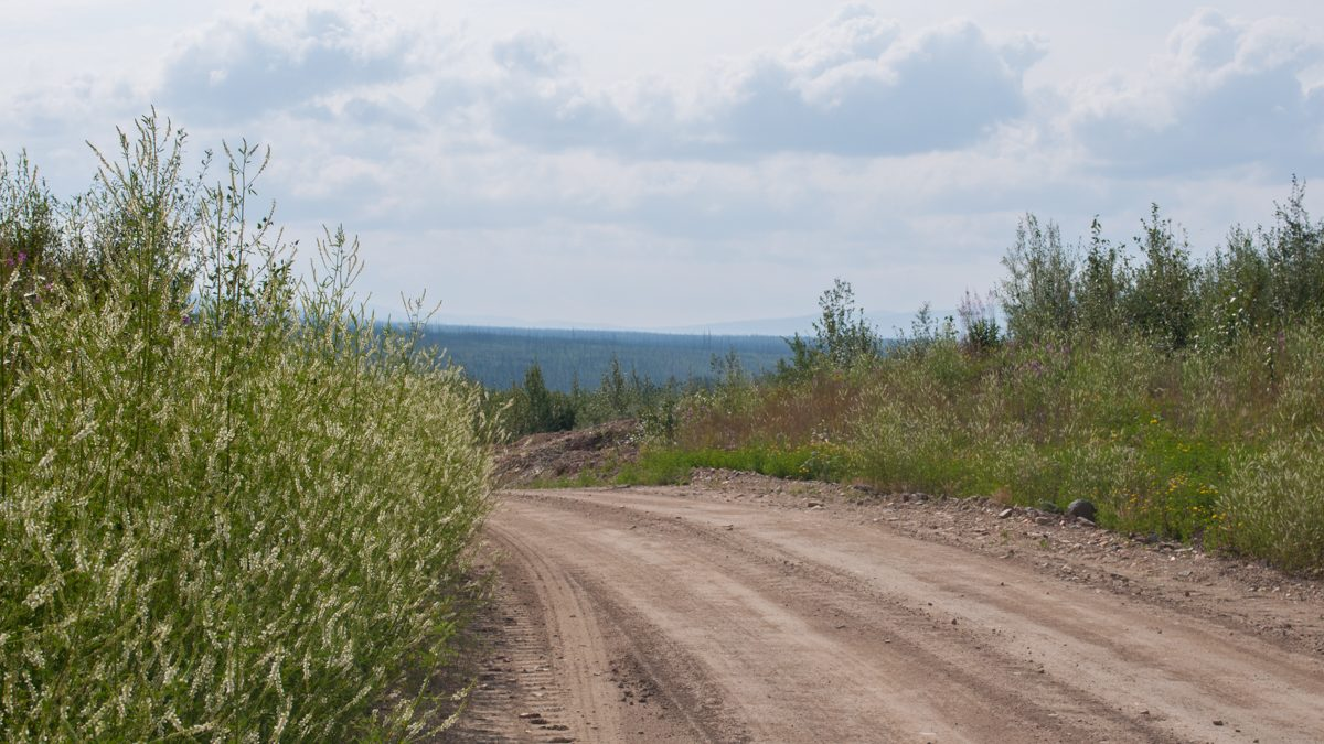 Exploring the gold field roads south of Dawson City
