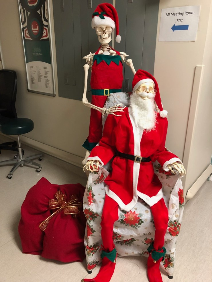 Santa and Mrs Claus decorated skeletons