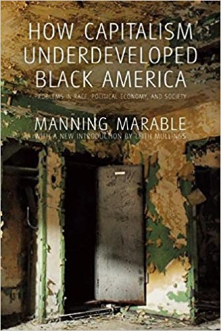 How Capitalism Underdeveloped Black America: Problems in Race, Political Economy, and Society by Manning Marable