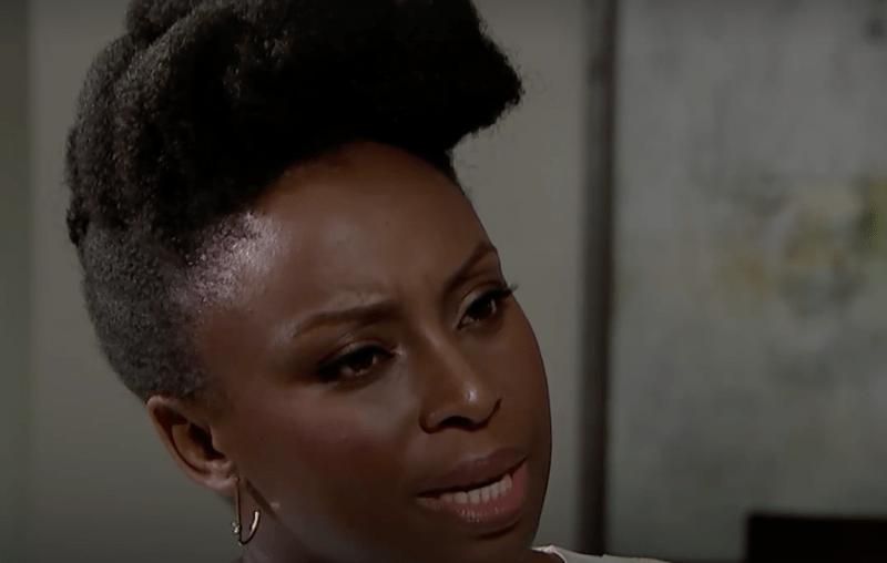 Chimamanda Ngozi Adichie-transwomen