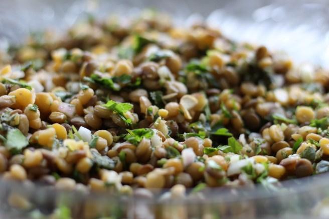 Armenian Lentils 2