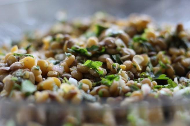 Armenian Lentils1
