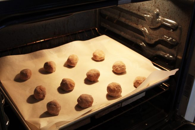 ginger_spice_4_in_the_oven