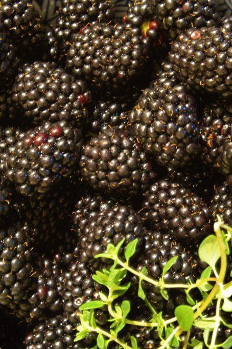 Blackberry Thyme Crisp1