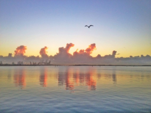 Miami sunrise