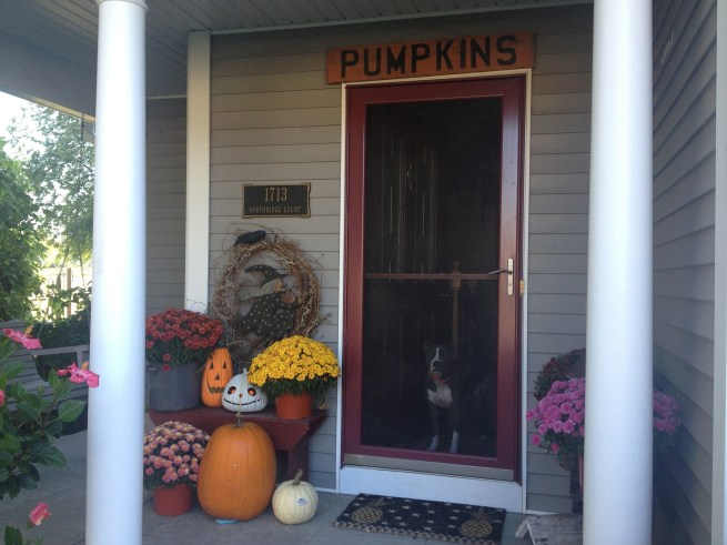 Front porch...notice who had to get into the shot?  That would be Jeter...