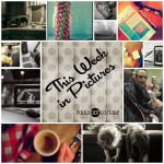 This Week in Pictures at Polka Dot Cottage