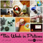 This Week in Pictures, Week 16, 2017