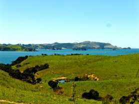 Bay of Islands - November 2014 - En Route to Kerikeri (2)