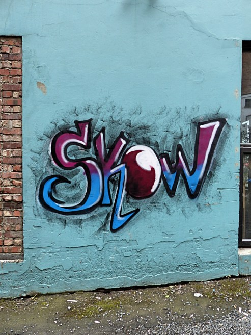 Dunedin - Skow