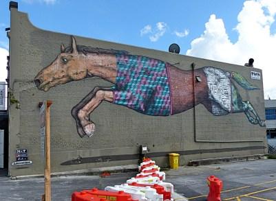 Horse - Mt Eden - BMD