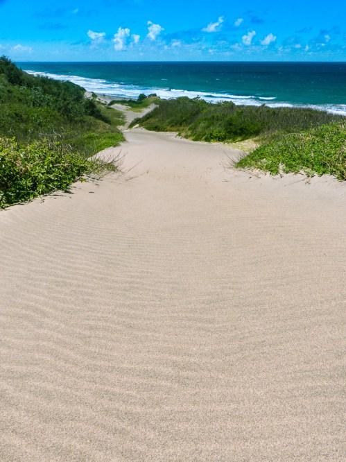 Sand Dune To Ocean