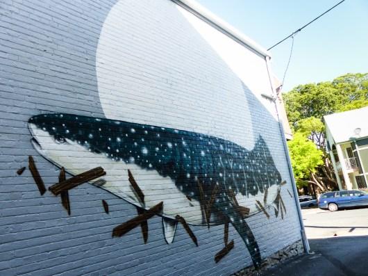 Street Art - Newcastle - October 2015 - Whale In Alley Off Laman Street - Artist Unknown