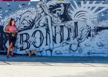 Bondi - Brainspired