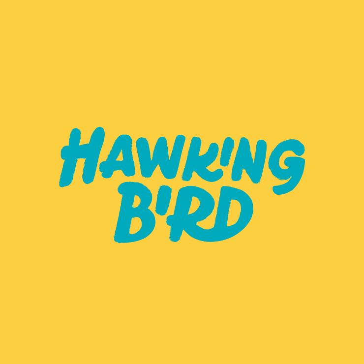 LE2018_HawkingBird_Square_03