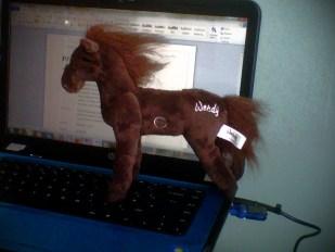 Cuddly Wendy Horse